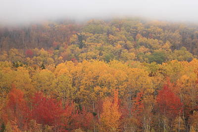 Photograph - Acadia National Park Fall Foliage by John Burk