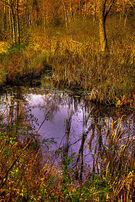 Photograph - Adirondack Pond IIi by David Patterson