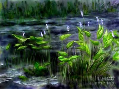 Adirondacks Natural Wetlands Pickeral Plant Art Print by Judy Filarecki