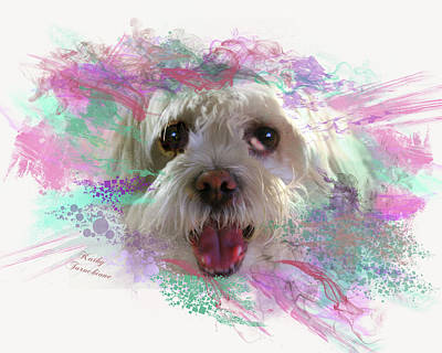 Digital Art - Adopt Me by Kathy Tarochione