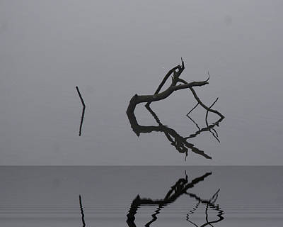 Photograph - Adrift In Fog Without Direction by Barry Doherty