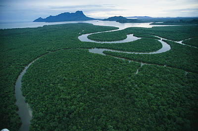 Aerial View Of The Salak River. Mount Art Print by Tim Laman