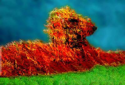 Dog Abstract Art Photograph - Aerugo by Paul Wear