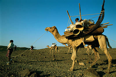 Transportation Of Goods Photograph - Afar People Carry Their Belongings by Carsten Peter