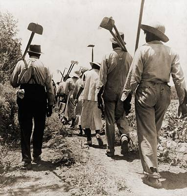African American Cotton Hoers Worked Art Print by Everett