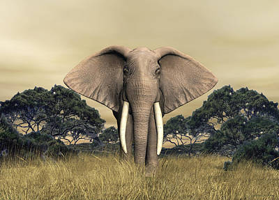 Digital Art - African Bull Elephant by Walter Colvin