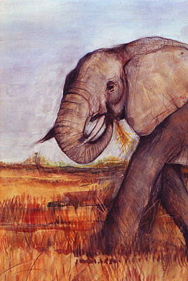 Painted Details Drawing - African Elephant by Rebecca Lilley