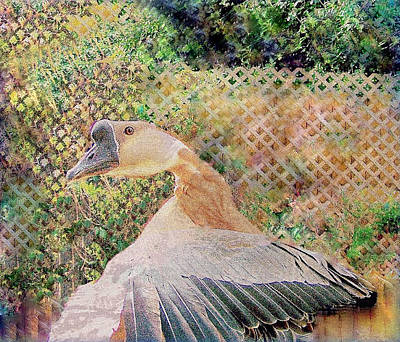 Mixed Media - African Goose  by YoMamaBird Rhonda