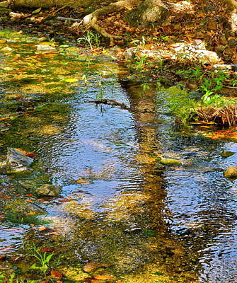 Photograph - After Monet Or Reflections In The Stream by Kirsten Giving