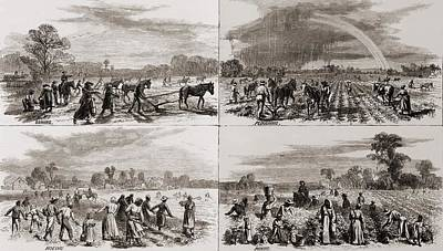 After The Civil War Many African Art Print by Everett