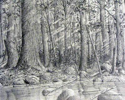 Art Print featuring the drawing After The Flash Flood by Jim Hubbard