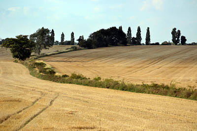 After The Harvest. Original by Terence Davis