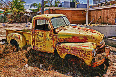 Photograph - After The Hurricane by Garry Gay