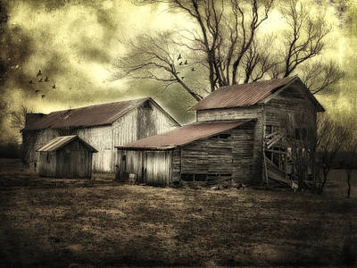 Art Print featuring the photograph After The Storm by Mary Timman