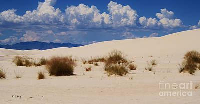Photograph - Afternoon At White Sands National Monument by Roena King