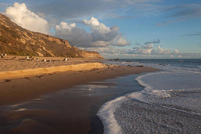 Afternoon Light  Crystal Cove State Beach Art Print by Cliff Wassmann