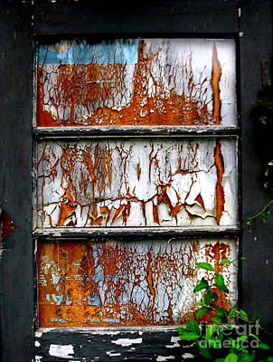 Aged Door Art Print