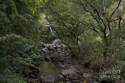 Photograph - Ahonui Waikamoi Kahawai Koolau Maui Hawaii by Sharon Mau