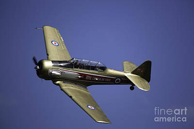 Air Show 16 Art Print by Darcy Evans