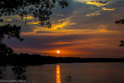 Photograph - Alabama Sunset by Shannon Harrington