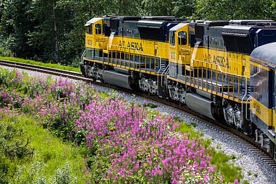 Up201209 Photograph - Alaska Railroad One by Josh Whalen