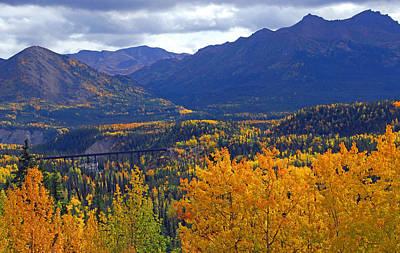 Photograph - Alaska Railroad Trestle by Alan Lenk