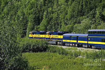 Alaskan Train Art Print by John Greim