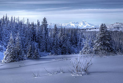 Alaskan Winter Landscape Art Print by Michele Cornelius