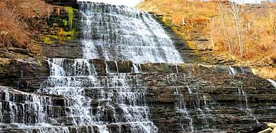 Photograph - Albion Falls  by Puzzles Shum