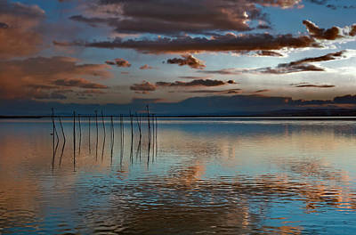 Photograph - Albufera Blue And Rose. Spain by Juan Carlos Ferro Duque
