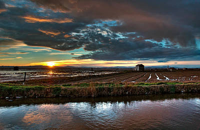 Photograph - Albufera Rice. Valencia. Spain by Juan Carlos Ferro Duque