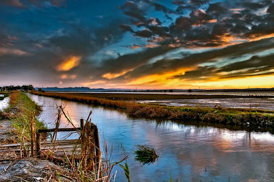 Photograph - Albufera's Channel. Valencia. Spain by Juan Carlos Ferro Duque