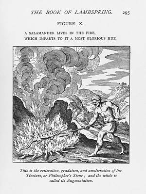 Fire Salamander Photograph - Alchemy by Science, Industry & Businessnew York Public Library