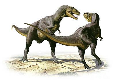 Alectrosaurus Olseni, A Prehistoric Art Print by Sergey Krasovskiy