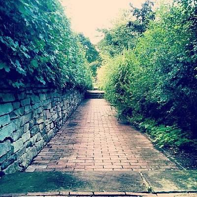 Pathway Photograph - #alexandermuir #pathway #cobblestones by Joy O