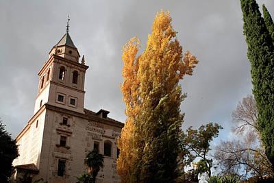 Photograph - Alhambra Gold Tree by Lorraine Devon Wilke