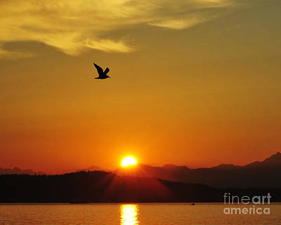 Photograph - Alki Beach Sunset 2 by Jack Moskovita