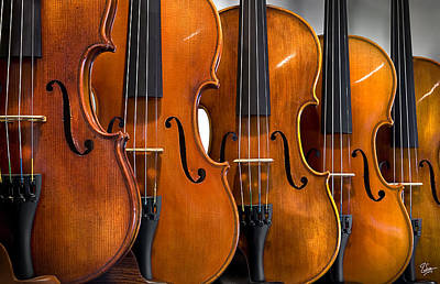 Violin Photograph - All In A Row by Endre Balogh