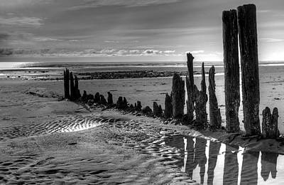 Art Print featuring the photograph All That Remains by Michele Cornelius