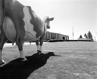 All We Have We Owe To Udders Original by Jan W Faul