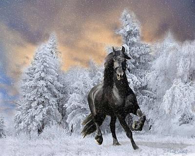Tom Schmidt Digital Art - Allegro Coming Home by Tom Schmidt