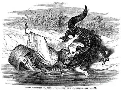 Alligator Attack, C1865 Art Print by Granger