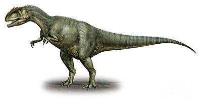 Allosaurus Digital Art - Allosaurus Fragilis, A Prehistoric Era by Sergey Krasovskiy