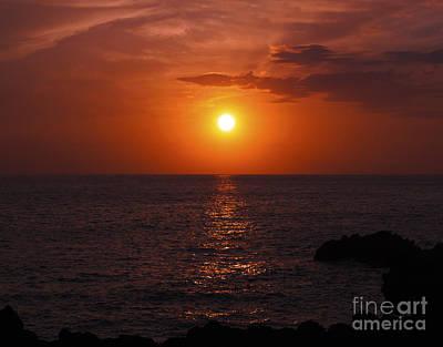Photograph - Aloha IIi by Patricia Griffin Brett