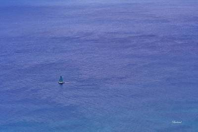 Burland Photograph - Alone by Burland McCormick