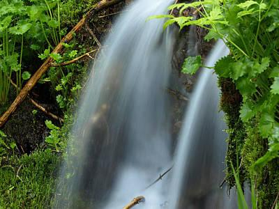 Photograph - Along The Brook by DeeLon Merritt