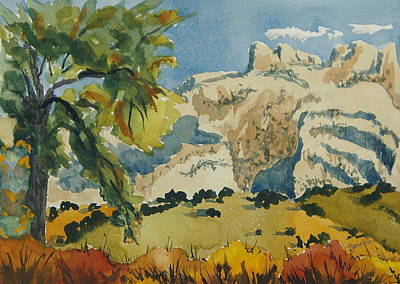 Painting - Along The Green River Dinosaur National Monument Utah Colorado by Zanobia Shalks
