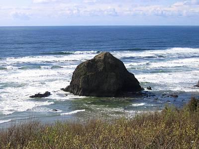 Photograph - Along The Oregon Coast by Will Borden
