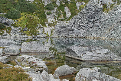 Photograph - Alpine Water Edge by Jan Piet