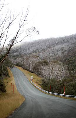 Bare Trees Photograph - Alpine Way Road Near Thredbo Australia by Virginia Star